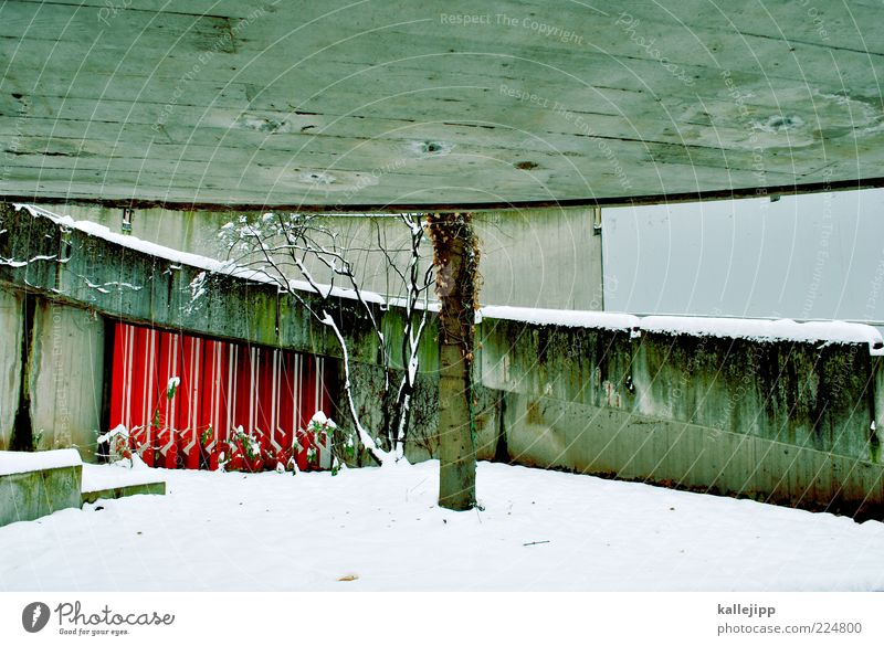ein dach über dem kopf Baum Winter kalt Wand grau Mauer Beton Design Treppe rund Dach unten Baumstamm verwittert Versteck