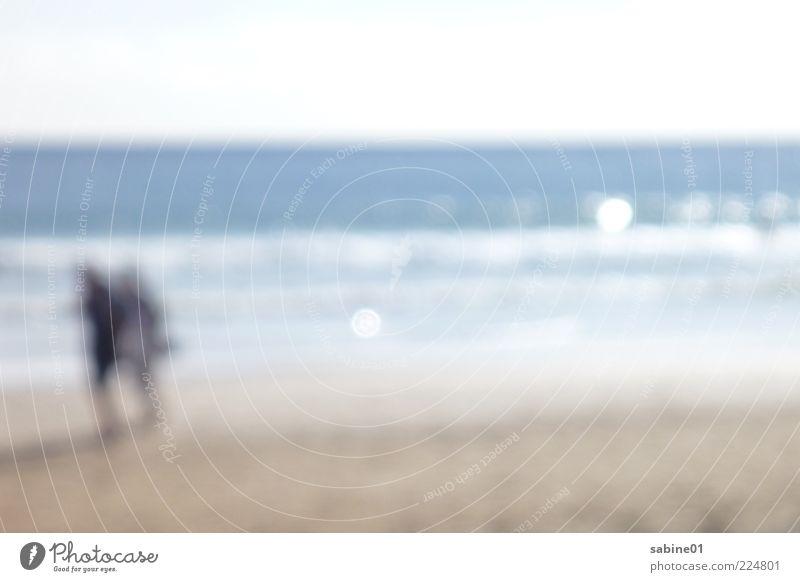 Strandwanderung Freizeit & Hobby Mensch Freundschaft Paar Partner Erwachsene 2 Umwelt Natur Sand Luft Wasser Schönes Wetter Wind Wellen Meer Farbfoto