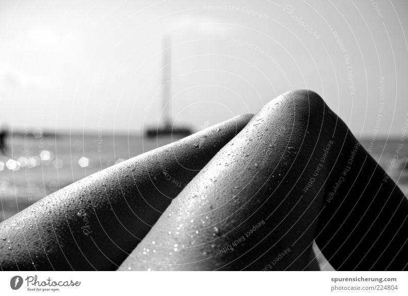 Glitzerbeine Jugendliche Strand Meer Erholung feminin Erotik Wärme Beine Haut glänzend liegen Wassertropfen ästhetisch weich Junge Frau Knie