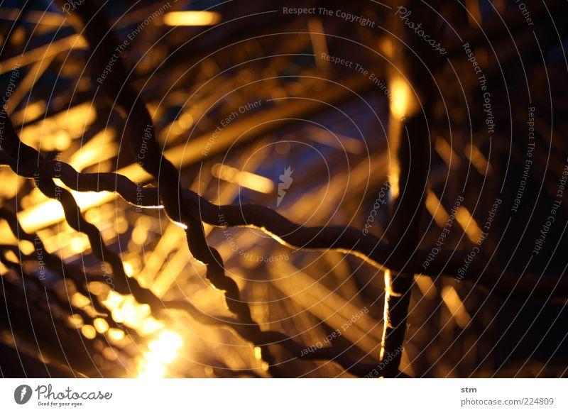 hinter gittern dunkel Denkmal Zaun Wahrzeichen Gitter Sehenswürdigkeit Tour d'Eiffel Beleuchtung Absperrgitter Gitternetz
