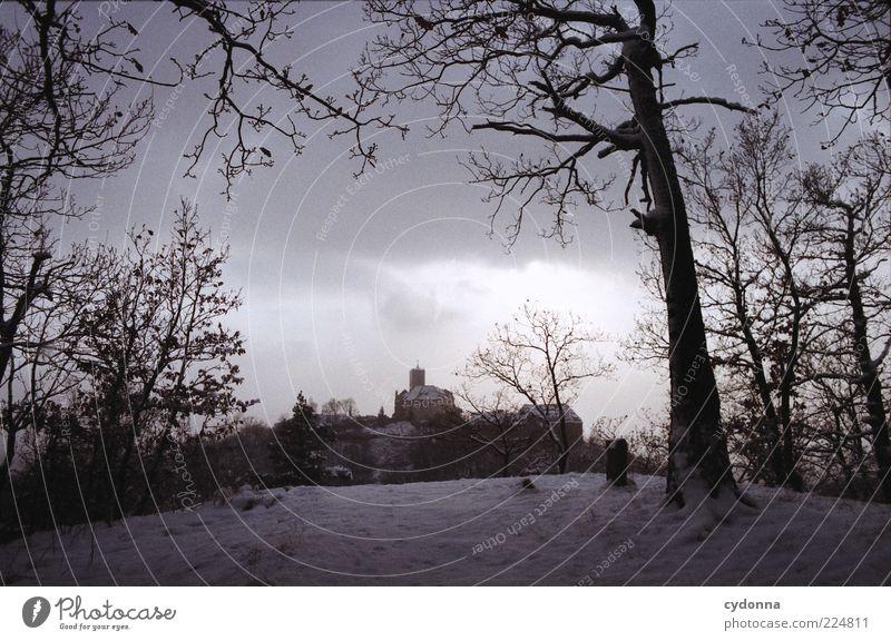 Wartburgblick I Ausflug Ferne Sightseeing Winterurlaub Umwelt Natur Landschaft Wolken Schnee Baum Wald Einsamkeit Nostalgie ruhig stagnierend Vergangenheit