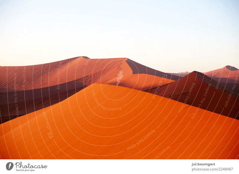 Sossusvlei Namibia Natur Landschaft Erde Sand Himmel Wüste Afrika rot Unendlichkeit Ferien & Urlaub & Reisen Düne Farbfoto Außenaufnahme Menschenleer Morgen