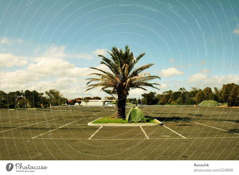 Holiday Himmel Wolken Glück Platz Fröhlichkeit Asphalt Palme Schönes Wetter Parkplatz Teer Zelt Grünfläche Markierungslinie
