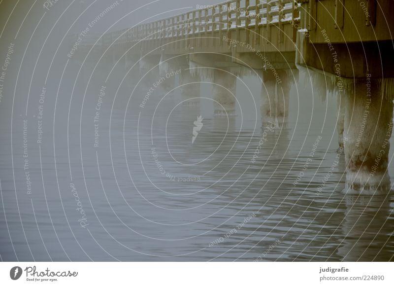 Küstennebel Umwelt Natur Wasser Winter Klima Wetter schlechtes Wetter Nebel Eis Frost Ostsee Meer Brücke Bauwerk Sehenswürdigkeit dunkel kalt Stimmung Seebrücke