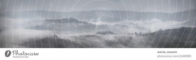 Panorama des Herbstregens und -nebels auf Gebirgshügeln. schön Ferien & Urlaub & Reisen Berge u. Gebirge Natur Landschaft Pflanze Himmel Wolken Wetter Nebel