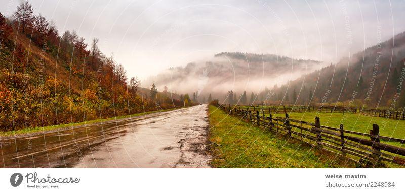Panorama der Straße in den Bergen. Bewölkter regnerischer nebelhafter Herbsttag Himmel Natur Ferien & Urlaub & Reisen grün Landschaft Baum Wolken Ferne Wald