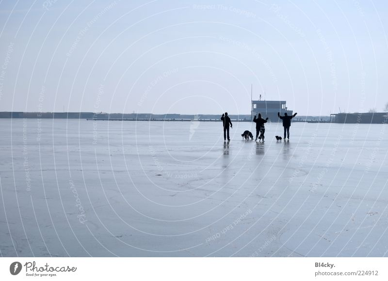 Graublau Mensch Natur Freude Winter Ferne Leben Landschaft Ausflug Freizeit & Hobby Frost gefroren winken Winterurlaub Eisfläche Wintertag Winterstimmung