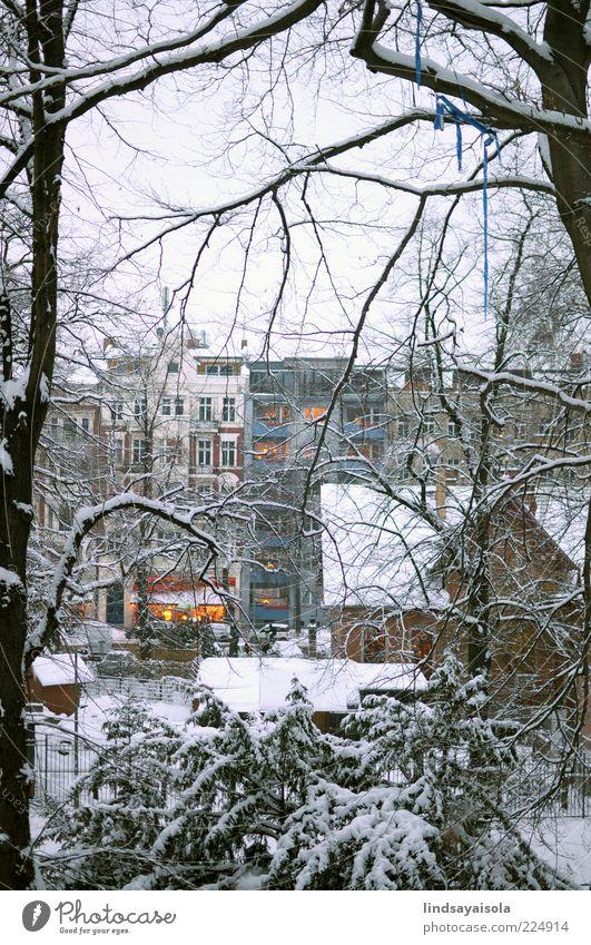 Natur schön Stadt Baum Ferien & Urlaub & Reisen Winter Schnee Fenster Umwelt Stimmung Park Wetter Eis Freizeit & Hobby Wohnung elegant