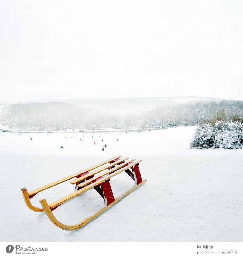 winter games Freizeit & Hobby Spielen Mensch Winter Klima weiß Rodeln Rodelbahn Schlitten Hügel Berghang kalt Kufe gleiten Nebel rodelwiese Farbfoto