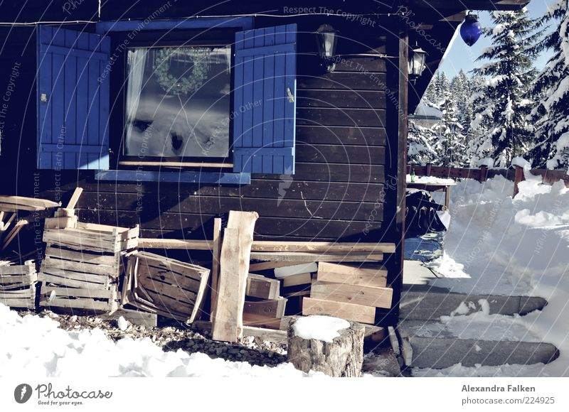 Holz vor der Hütt'n. Natur Haus Schnee Fenster Holz Eis Frost authentisch Tanne Hütte Tradition alternativ heizen Fensterladen Einfamilienhaus Vorrat