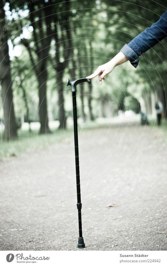 barrierefrei . . . bald Leben Arme laufen wandern gehen Spazierstock Gehhilfe Barriere Behindertengerecht Hilfsbereitschaft festhalten begleiten Jeansjacke