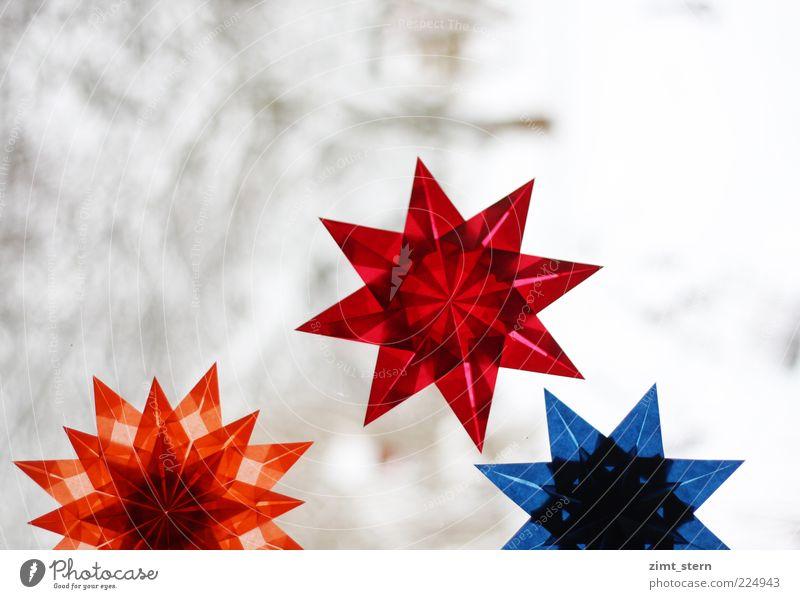 Sternfalten Weihnachten & Advent blau rot Winter Schnee glänzend leuchten Dekoration & Verzierung ästhetisch Kreativität einzigartig Stern (Symbol) Papier Symmetrie geduldig Präzision