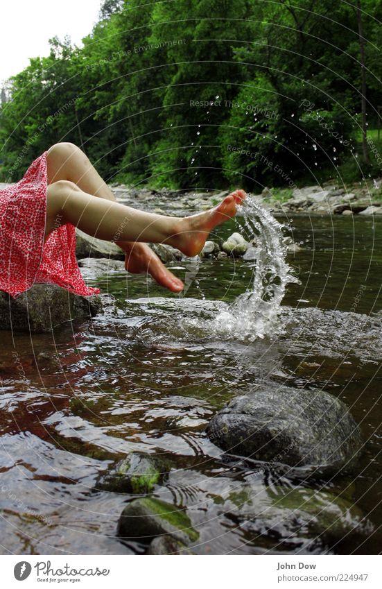 Loreley Sommer Sonnenbad feminin Junge Frau Jugendliche Beine Fuß 1 Mensch Frühling Pflanze Baum Sträucher Flussufer Rock Fröhlichkeit frisch Freude