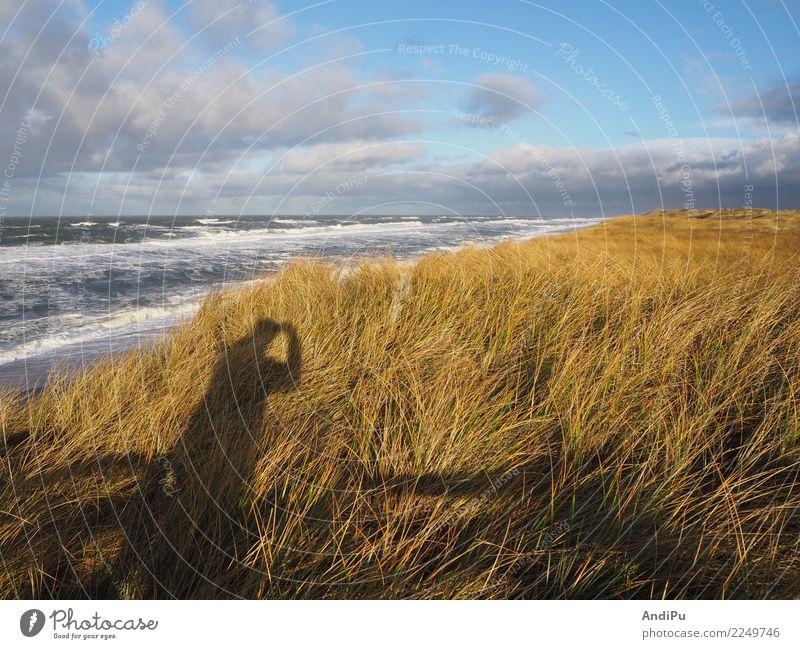 Morgendliche Stimmung an der Küste von Hörnum auf Sylt Himmel Natur Ferien & Urlaub & Reisen Wasser Landschaft Meer Erholung Wolken ruhig Strand Tourismus