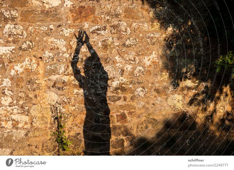Freizeitspaß | den Namen tanzen Mensch 1 stehen Hände hoch gestikulieren Kerze Tanzen Schatten Schattenspiel Schattenseite Schattenkind Schattendasein strecken