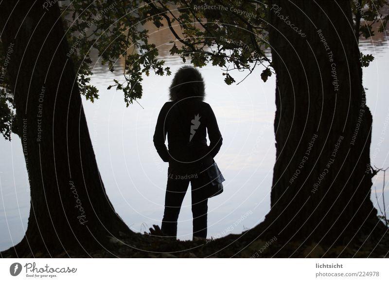Seeblick Mensch Frau Natur Jugendliche Wasser Baum Einsamkeit ruhig Erwachsene feminin Gefühle Freiheit Traurigkeit See Wetter Zufriedenheit