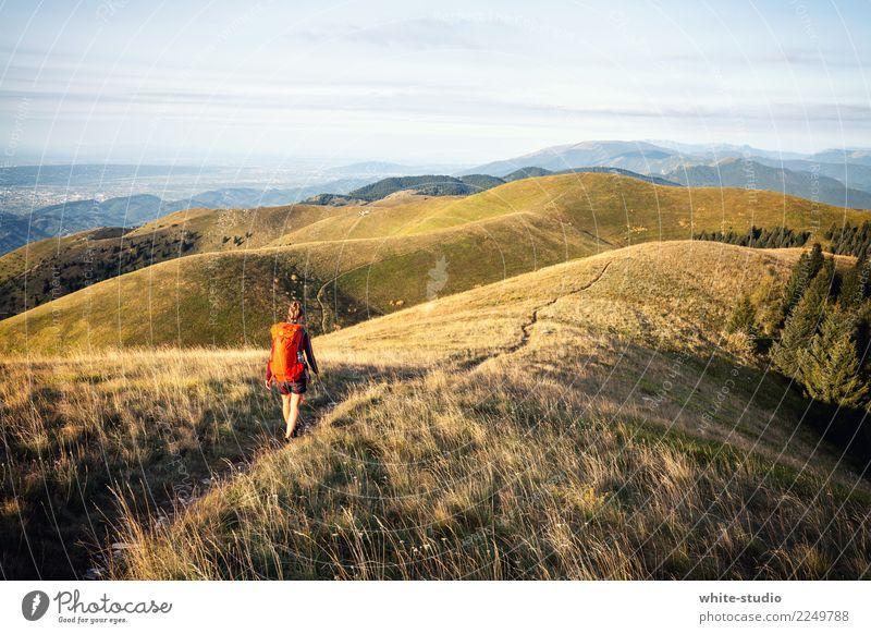 Endlose Hügel Natur Ferien & Urlaub & Reisen Sommer Landschaft Einsamkeit Ferne Berge u. Gebirge Umwelt Wege & Pfade Wiese Tourismus Ausflug gehen wandern