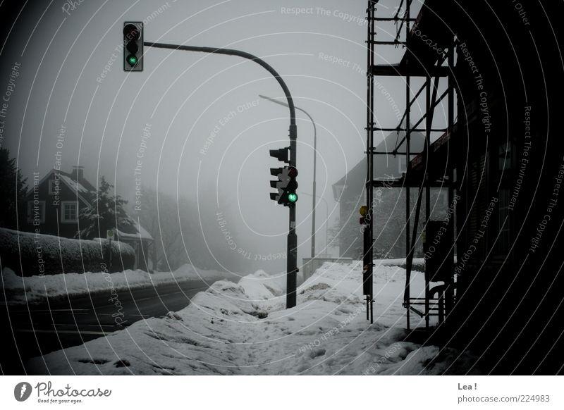Bei rot bleib ich stehen, bei grün darf ich gehen! Wetter Nebel Eis Frost Schnee Verkehrswege Straße Ampel Ferne trist grau schwarz weiß Einsamkeit Umwelt