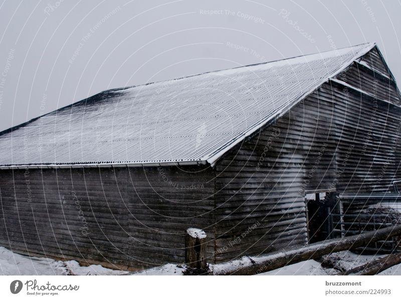 Gimme Shelter Landwirtschaft Bauernhof Stall Winter Wetter Schnee Gebäude Holz Holzhaus Scheune frieren kalt Schutz Tierhaltung Dach Zaun Menschenleer Tag