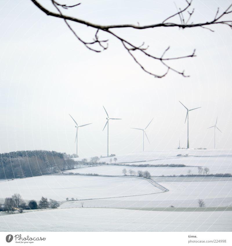 Wolkenkratzer im Lippischen Winter Schnee Energiewirtschaft Umwelt Landschaft Baum hell grau weiß Umweltschutz Ast Zweig Schneelandschaft Wäldchen Farbfoto