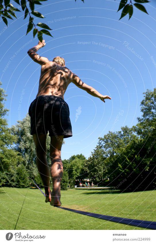 long line Lifestyle Freude Sommer Sonne Sport Sportler Mensch Junger Mann Jugendliche 1 18-30 Jahre Erwachsene Baum Gras Park Wiese Bewegung gehen laufen