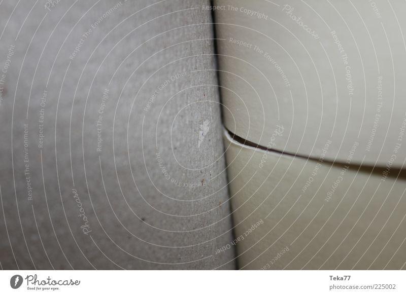 Rollenweise grau Hintergrundbild Papier Streifen trocken Verpackung Bildausschnitt Anschnitt Toilettenpapier