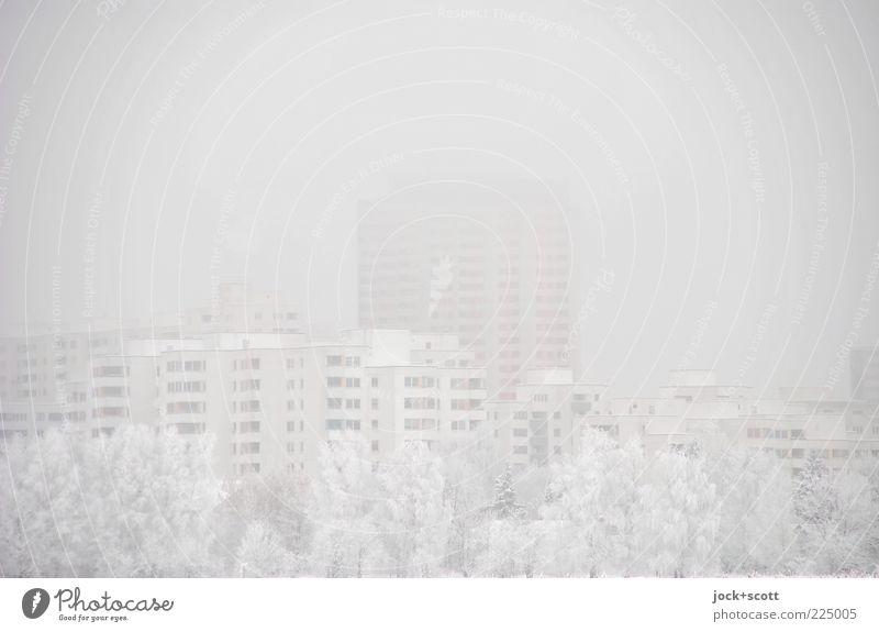 Schneeblind am Stadtrand Luft Himmel Winter schlechtes Wetter Nebel Baum Marienfelde Stadthaus Wohnhochhaus hell kalt grau weiß Stimmung Schutz Weisheit