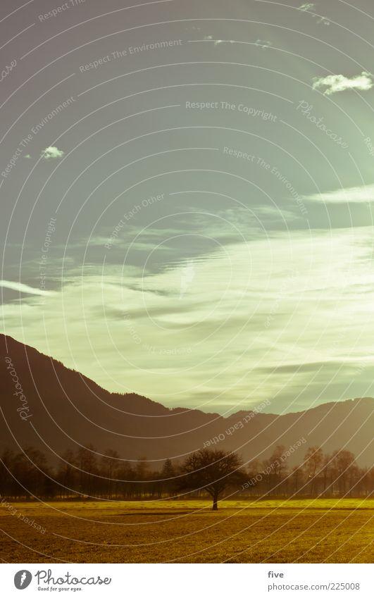 morgenstund Himmel Natur Baum Pflanze Wolken Wald Wiese Berge u. Gebirge Herbst Landschaft Umwelt Stimmung Wetter hell Felsen Weide