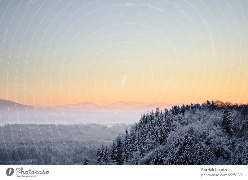Winterabend Umwelt Natur Landschaft Urelemente Luft Himmel Wolkenloser Himmel Klima Wetter Schönes Wetter Schnee Wald Hügel Berge u. Gebirge Erholung hell schön