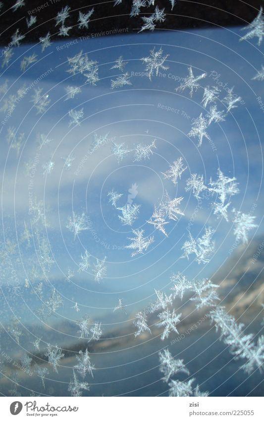 Eisblumen Himmel Natur Wasser weiß blau Winter kalt Schnee Landschaft Schneefall See glänzend Glas ästhetisch Klima