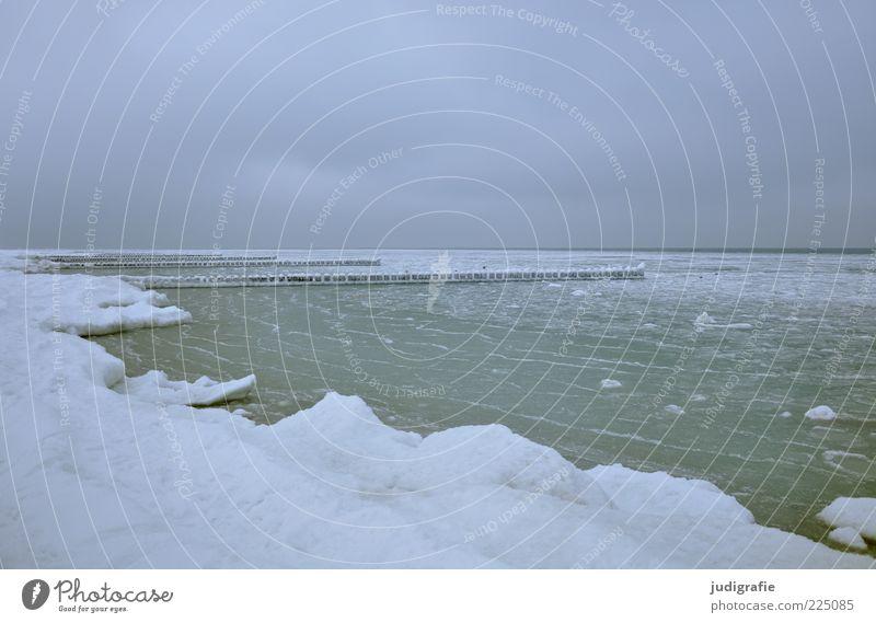 Ostsee Himmel Natur Meer Wolken ruhig Winter Einsamkeit Ferne kalt Schnee Landschaft Umwelt Küste Stimmung Eis Klima