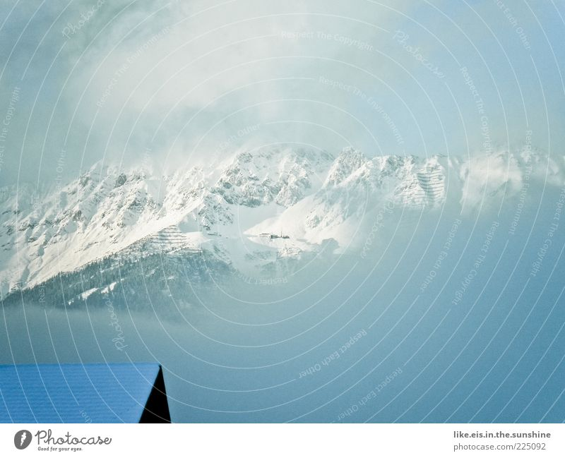 Über den Dächern Innsbrucks weiß Wolken Winter Ferne kalt Schnee Berge u. Gebirge Landschaft Nebel groß ästhetisch Dach außergewöhnlich Alpen fantastisch Gipfel