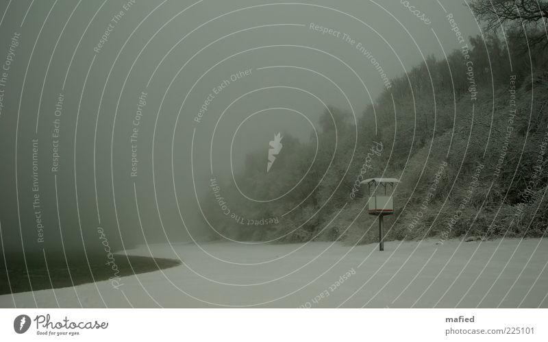 Baywatch Natur Wasser weiß grün Baum Strand Meer Winter Einsamkeit kalt Schnee Landschaft grau Küste Nebel Sträucher