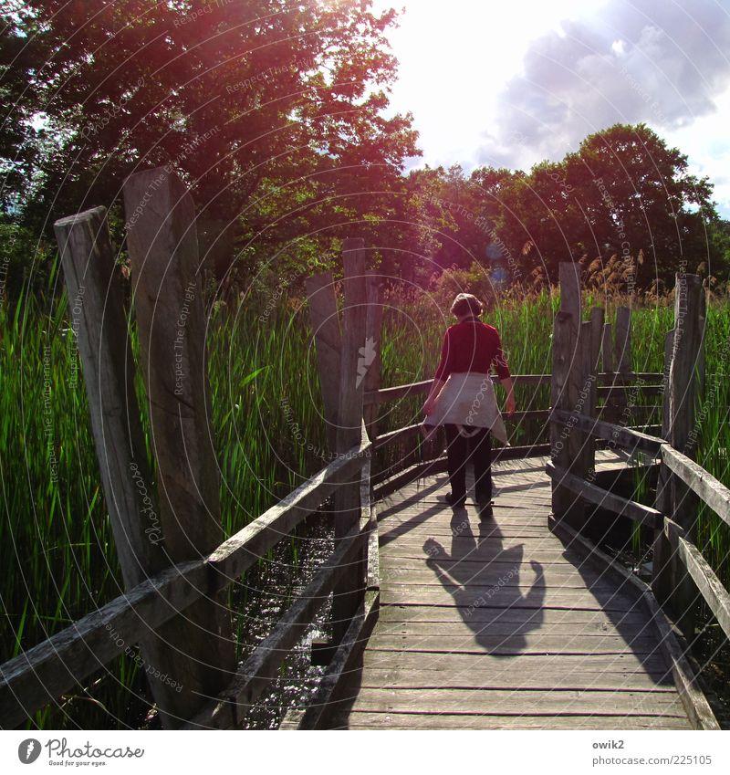 Naturlehrpfad Freizeit & Hobby Ausflug Spaziergang Mensch Frau Erwachsene Leben 1 Umwelt Landschaft Pflanze Frühling Klima Wetter Schönes Wetter Baum