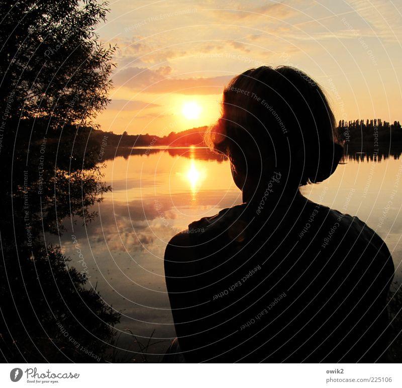 Sonnen am See Ferien & Urlaub & Reisen Ausflug Ferne Freiheit Mensch feminin Frau Erwachsene Partner Haare & Frisuren Rücken Hinterkopf 1 Umwelt Natur