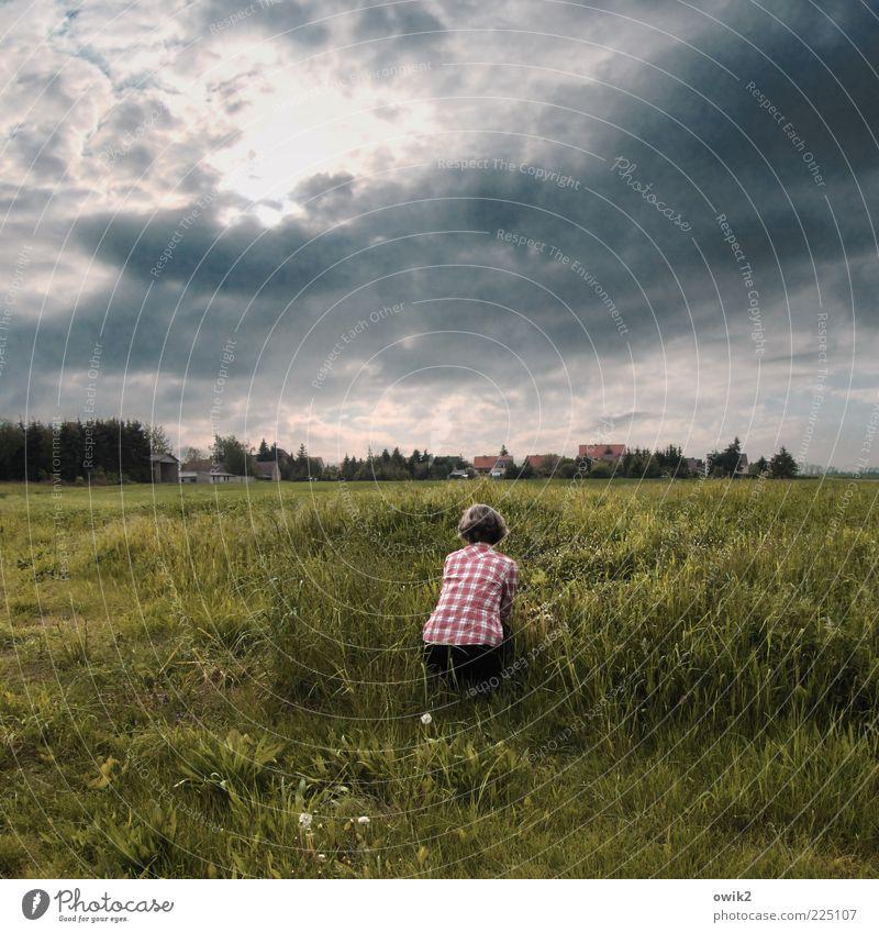 War' n schöner Blumenstrauß Freizeit & Hobby Mensch Frau Erwachsene Partner Rücken Umwelt Natur Landschaft Pflanze Himmel Gewitterwolken Klima Wetter Gras Wiese