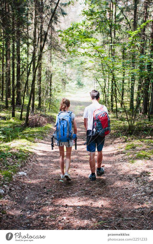 Junge und Mädchen, die in einen Wald am Sommertag wandern Lifestyle Ferien & Urlaub & Reisen Ausflug Abenteuer Freiheit Junge Frau Jugendliche Junger Mann