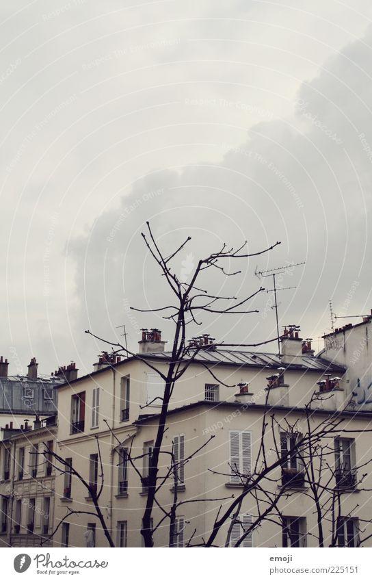 Hotelausblick I Himmel Stadt Wolken Winter Haus kalt Wand Fenster grau Mauer Gebäude Wetter trist Ast karg Wolkenhimmel