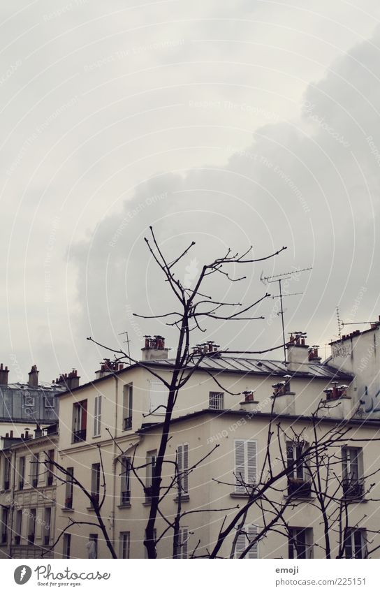 Hotelausblick I Stadt Haus Gebäude Mauer Wand Fenster kalt grau Ast karg Wetter Winter Wolken Wolkenhimmel Wolkendecke Himmel Farbfoto Außenaufnahme
