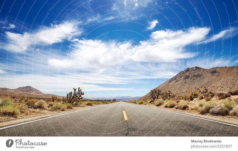 Panoramabild einer endlosen Straße. Ferien & Urlaub & Reisen Tourismus Ausflug Abenteuer Ferne Freiheit Expedition Camping Fahrradtour Landschaft Himmel