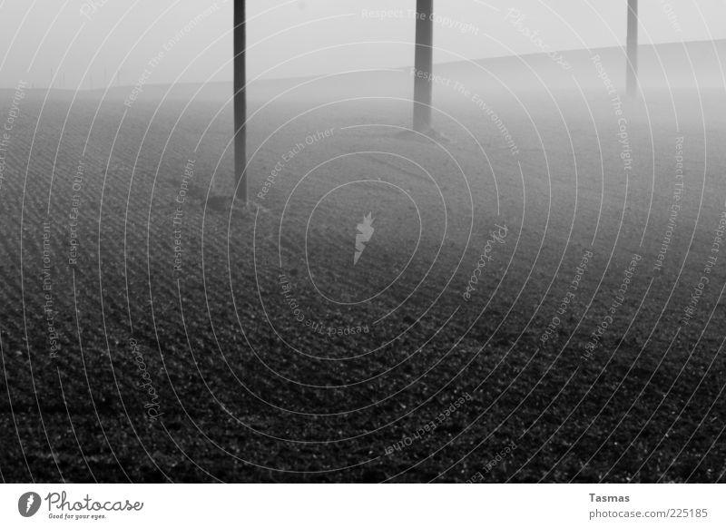 Nebel des grauens Erde Winter Ackerbau Ackerboden Feld dunkel Telefonmast Strommast Schwarzweißfoto Außenaufnahme Menschenleer Bodennebel Morgennebel