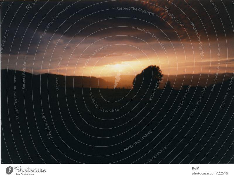 GutenAbend1 Baum Licht Sonnenuntergang Berge u. Gebirge Himmel
