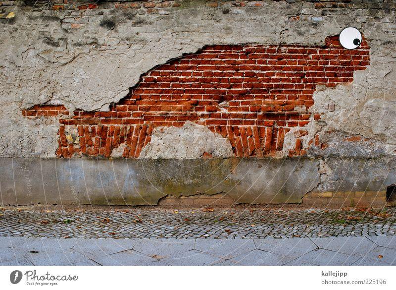 versteinerung alt Auge Mauer lustig kaputt verfallen Bürgersteig Backstein Verfall schäbig Putz graphisch verwittert abblättern Straßenkunst Backsteinwand