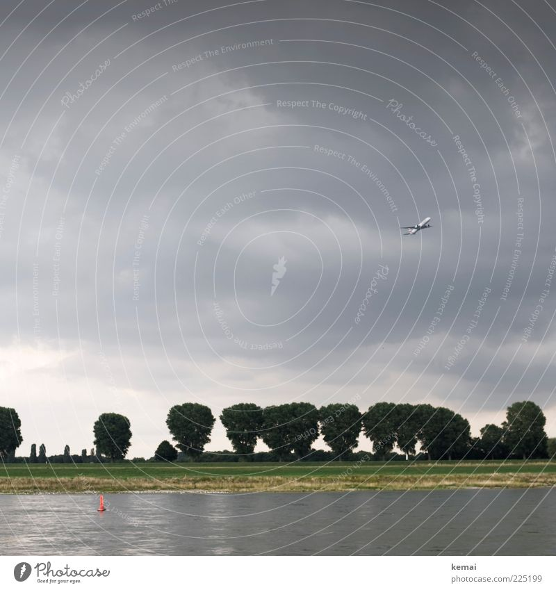 Abflug Umwelt Natur Landschaft Pflanze Urelemente Wasser Himmel Wolken Gewitterwolken Sommer schlechtes Wetter Baum Grünpflanze Park Küste Flussufer Rhein