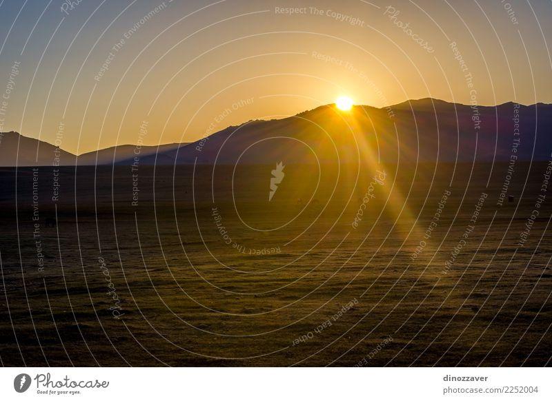 Song Kul See mit Pferden im Sonnenaufgang schön Ferien & Urlaub & Reisen Sommer Schnee Berge u. Gebirge Natur Landschaft Tier Himmel Wolken Nebel Gras Park