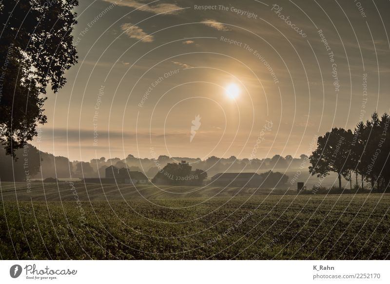 Ein Morgen in Schleswig-Holstein. Ferien & Urlaub & Reisen Sommer Haus Garten Landwirtschaft Forstwirtschaft Natur Landschaft Himmel Wolken Sonne Sonnenaufgang