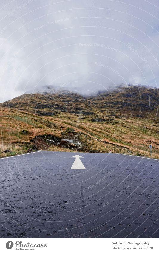 Hier geht's entlang!- Teil 2 Umwelt Natur Landschaft Wolken Nebel Wiese Berge u. Gebirge Gipfel Straße Straßenkreuzung Wege & Pfade Wegkreuzung beobachten
