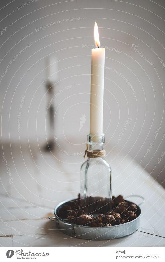 Kerze Dekoration & Verzierung Kitsch Krimskrams Kerzenschein Weihnachten & Advent Weihnachtsdekoration schön Wunsch Farbfoto Innenaufnahme Detailaufnahme