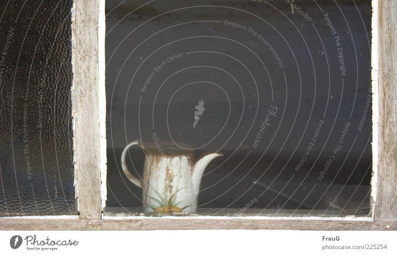 Verstaubt und vergessen alt weiß Einsamkeit Fenster Holz Traurigkeit warten Verfall Rahmen Kannen Behälter u. Gefäße Glasscheibe Endzeitstimmung Stimmung Tragegriff Fensterrahmen