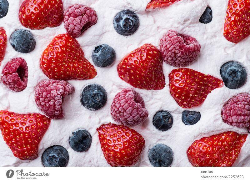 Sahnecreme mit Erdbeeren, Himbeeren und Blaubeeren Dessert Milcherzeugnisse Frucht Kuchen Ernährung Kaffeetrinken Bioprodukte Essen genießen frisch Gesundheit